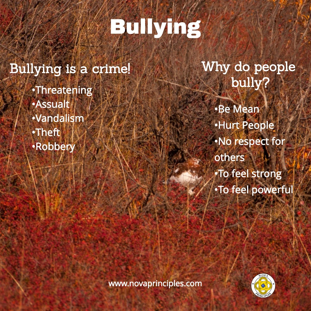 Traits - Bullying